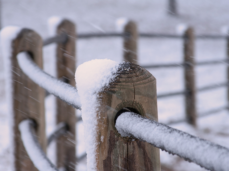 Durable Quality Fence