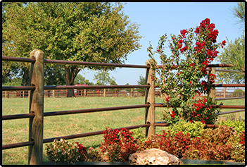 Beautiful Fencing